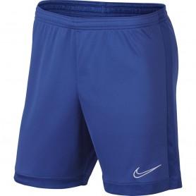 Nike M Dry Academy shorts